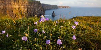 See the best of Ireland on a self-drive holiday